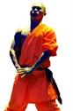 Bild von Kampfanzug - Orange